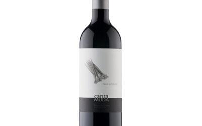 Red wine Finca La Cebolla – Bodegas Briones Abad